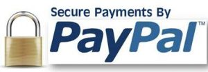 pay-through-paypal